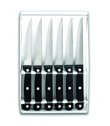 Set 6 longes couteaux Micro Lacor dentelé