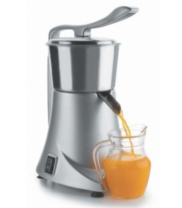 Professional electric juicer